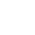 cctv systems logo