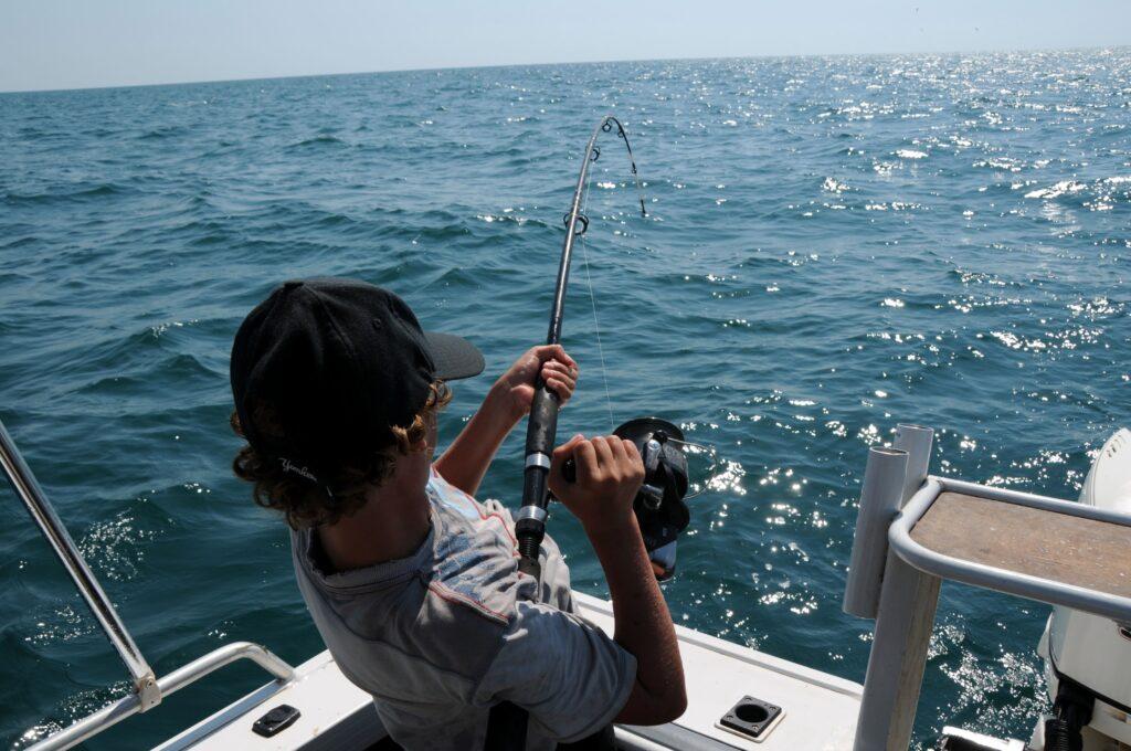 how do fishfinders work